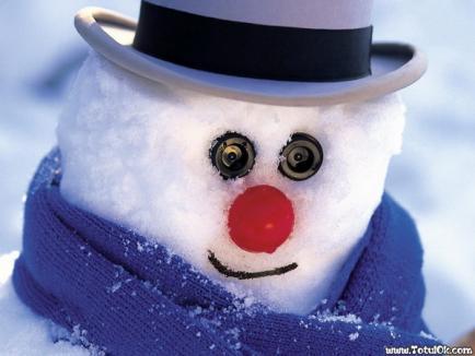 Alo, Poliţia? Mi-au furat omul de zăpadă!